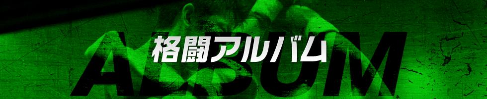 格闘アルバム